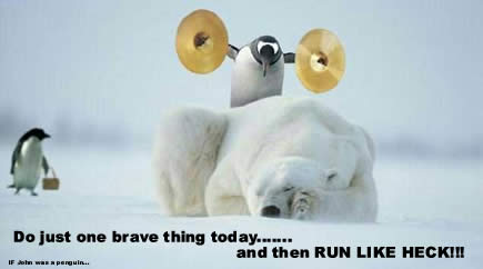 Funny Cute Pictures penguin 2013 1